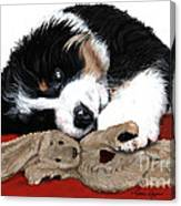 Lullaby Berner And Bunny Canvas Print