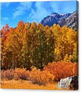 Lundy's Fall Show Canvas Print