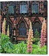 Lupines At Chester Cathedral 6805 Canvas Print