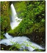 Lush Gorge Falls Canvas Print