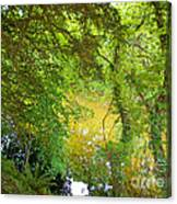 Luss Waters Canvas Print