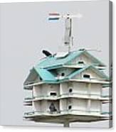Luxury  Bird Apartment Canvas Print