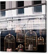 Lv Gilded Cage Bags Canvas Print