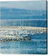 Lyme Regis Under Glass Canvas Print