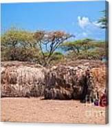 Maasai Huts In Their Village In Tanzania Canvas Print