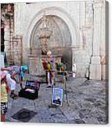 Macaws In Dubrovnik Canvas Print