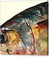 Mackerel Fish Canvas Print