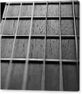 Macro Guitar Strings Canvas Print