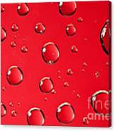 Macro Water Drop On Red Canvas Print