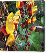 Madikiri - Phool Canvas Print