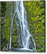 Madison Creek Falls #1 Canvas Print