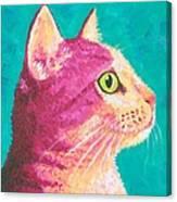 Magenta Kitty Canvas Print
