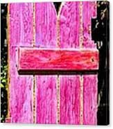 Magenta Painted Door In Garden  Canvas Print