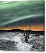 Magic Aurora Canvas Print