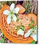 Magic Mushroom Canvas Print