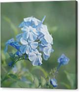 Magical Blues Canvas Print
