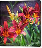 Magical Evening Daylilies Canvas Print