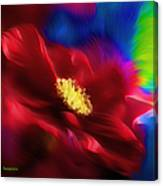 Magical Rose Canvas Print