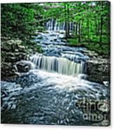 Magical Waterfall Stream Canvas Print