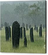 Magnetic Termite Mounds Canvas Print