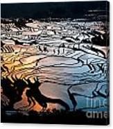 Magnificent Rice Terrace Canvas Print