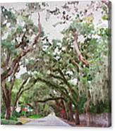 Magnolia Avenue Canvas Print