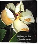 Magnolia Blossom In All Its Glory - Keep Love In Your Heart Canvas Print