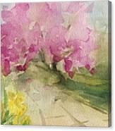 Magnolia Tree Central Park Watercolor Landscape Painting Canvas Print