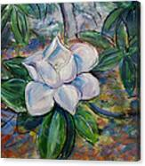 Magnolia's Flower Canvas Print