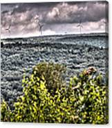 Mahanoy Mountain  Canvas Print