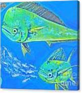 Mahi Trio Canvas Print