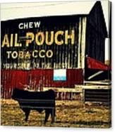 Mail Pouch-4 Canvas Print