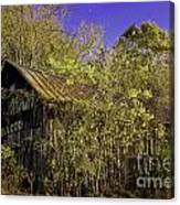 Mail Pouch Barn-0107 Canvas Print