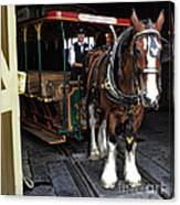 Main Street Horse And Trolley Canvas Print