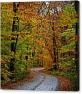 Journey Maine 55 Canvas Print