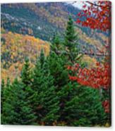 maine 57 Baxter State Park Loop Road Fall Foliage Canvas Print