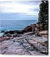 Maine Coastline Canvas Print