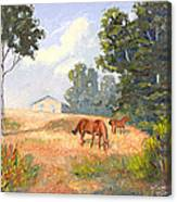 Mainely Grazing Canvas Print