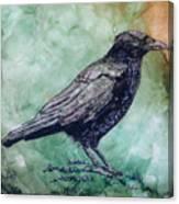 Majestic Crow Canvas Print