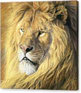 Majestic - Detail Canvas Print