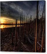 Majestic Lake Sunset Canvas Print