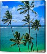 Majestic Palm Trees Canvas Print