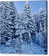 Majestic Winter Wonderland Canvas Print