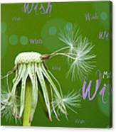Make A Wish Card Canvas Print