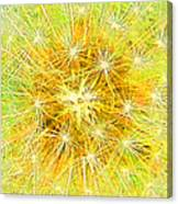 Make A Wish In Greenish Yellow Canvas Print