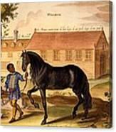 Makomilia, A Turk, Led By A Negro Canvas Print