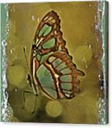 Malachite - Flying Jewel Canvas Print