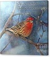 Male Housefinch With Verse Canvas Print