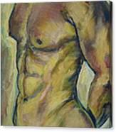 Nude Male Torso Canvas Print
