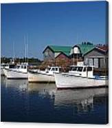 Malpeque Harbor Early Evening Canvas Print